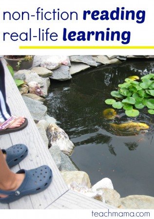non-fiction reading and real-life learning with fish