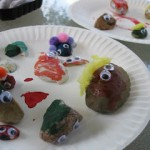 pet rocks, rocks for pets