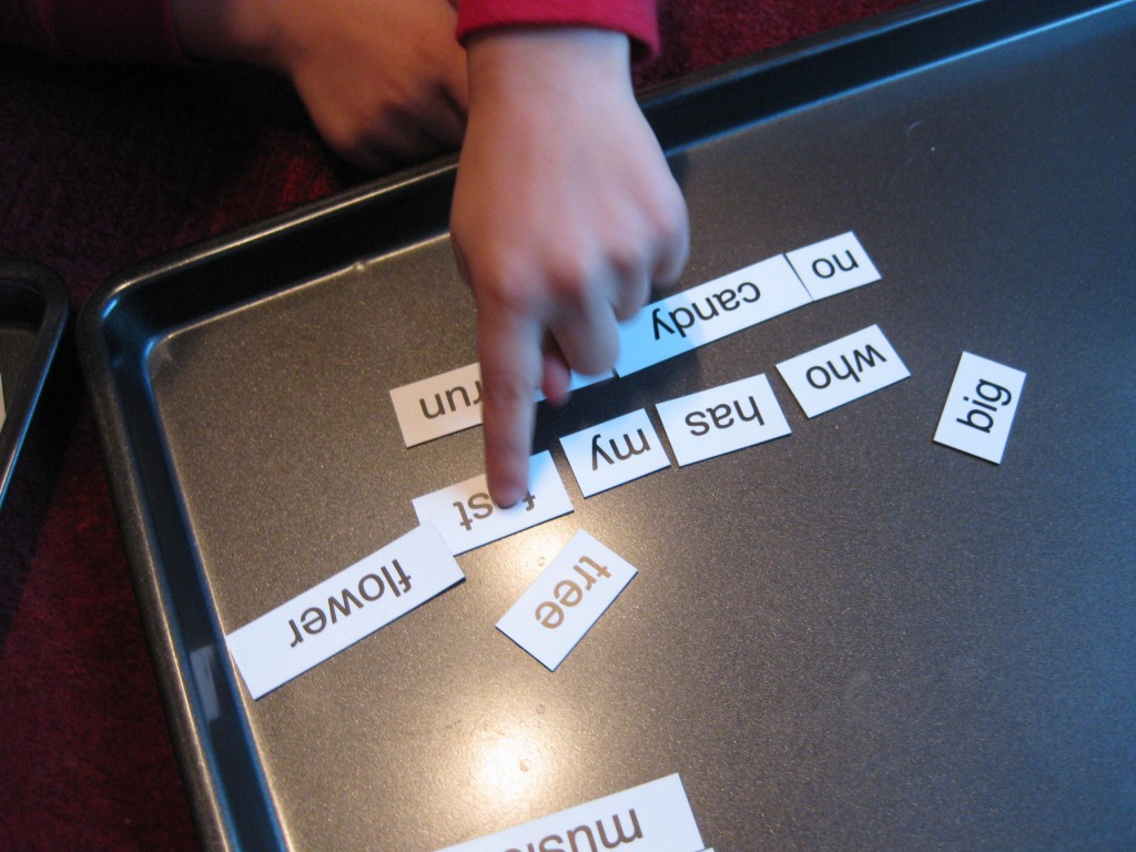 magnetic poetry (11)