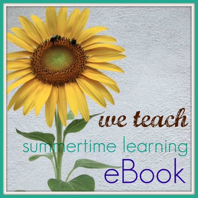 we teach summer ebook 2011