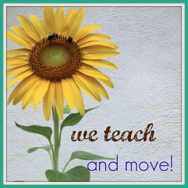 we teach summer ebook and  move