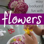 backyard fun: dissecting, examining, and learning about flowers
