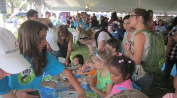 national book festival and gala: what I learned