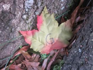 leafy, outdoor alphabet letter hunt