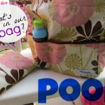 new for us friday: pish posh mommy keeps the pool bag cool