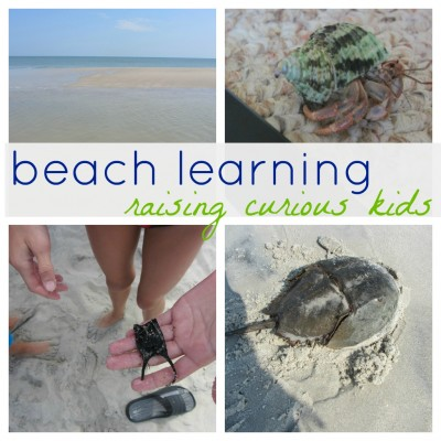 beach learning