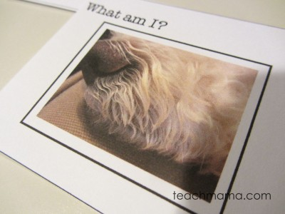 wordless riddle lunchbox notes