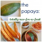 the papaya: totally new for our family fruit