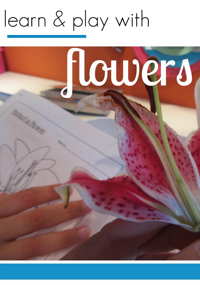 tabletop surprises flowers