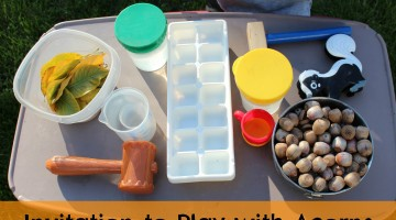 invitation to play with acorns: outdoor fun for little ones