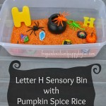 halloween sensory bin and learning letter H