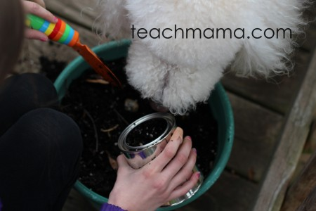 planting gardening with kids - 11