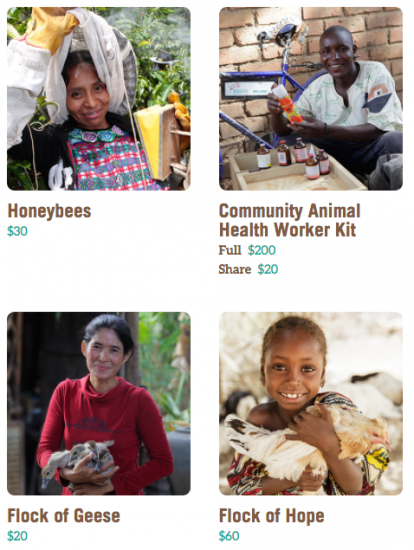 gifts that teach kids the power of giving: animal gifts from heifer international
