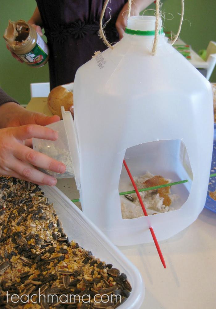 milk jug feeder for backyard birds  teachmama.com