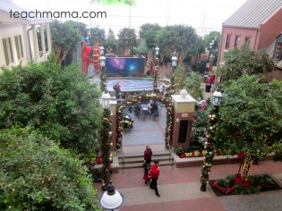 gaylord national ICE