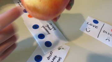 red apple taste test | science at home | teachmama.com