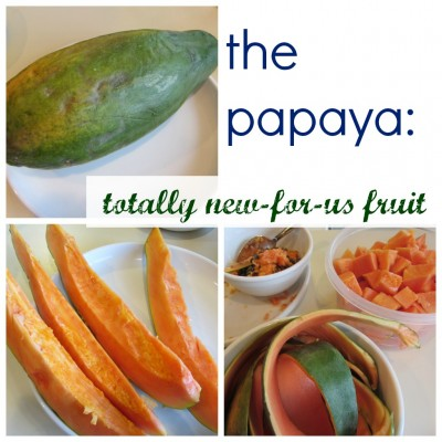 the papaya new for us fruit cover
