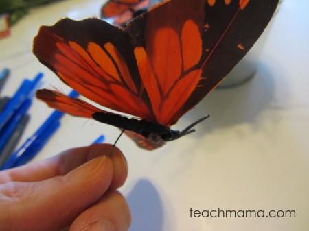 butterfly pens