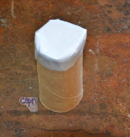 Ghost--TP Roll with paper on it