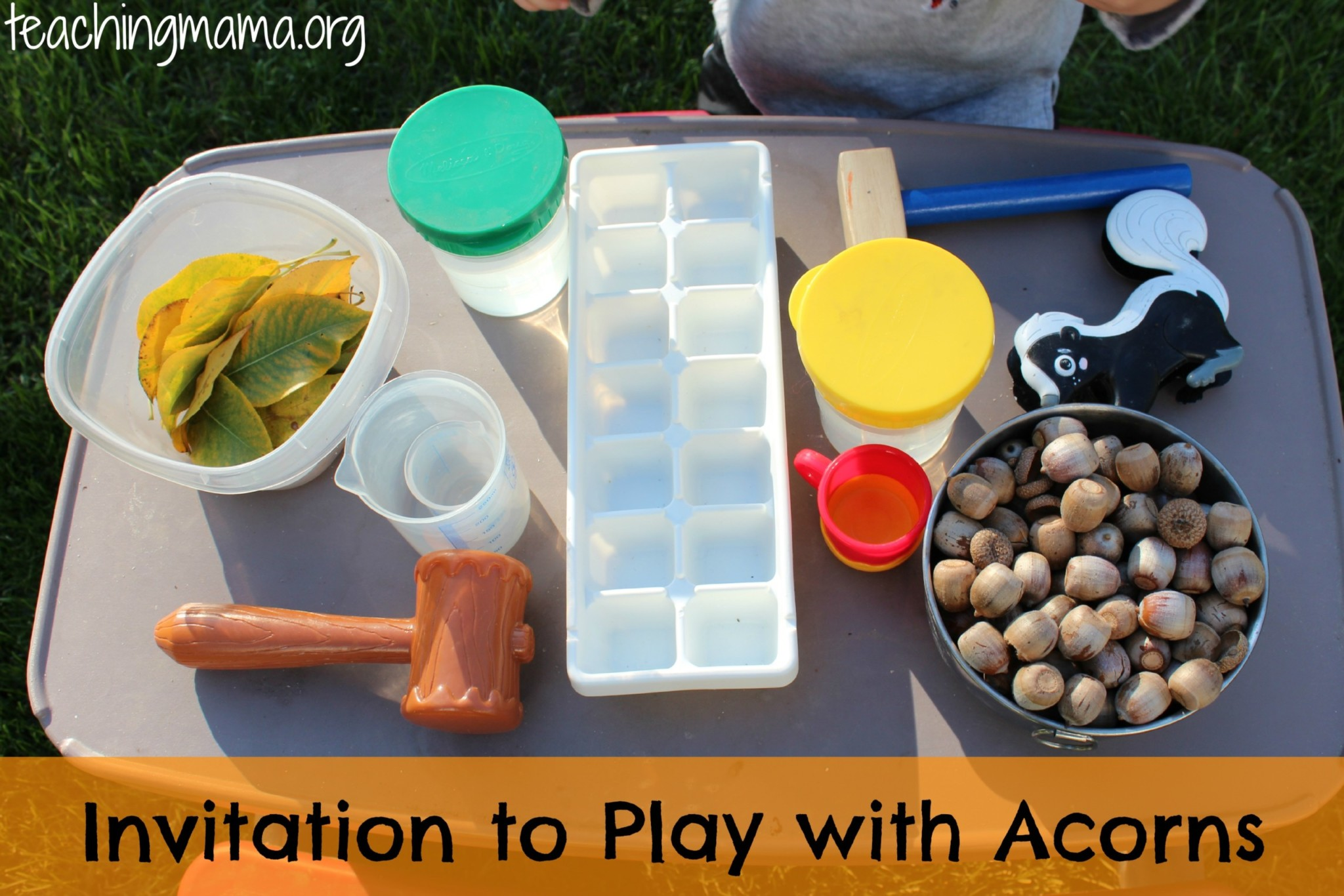 invitation to play with acrons: outdoor fun for little ones