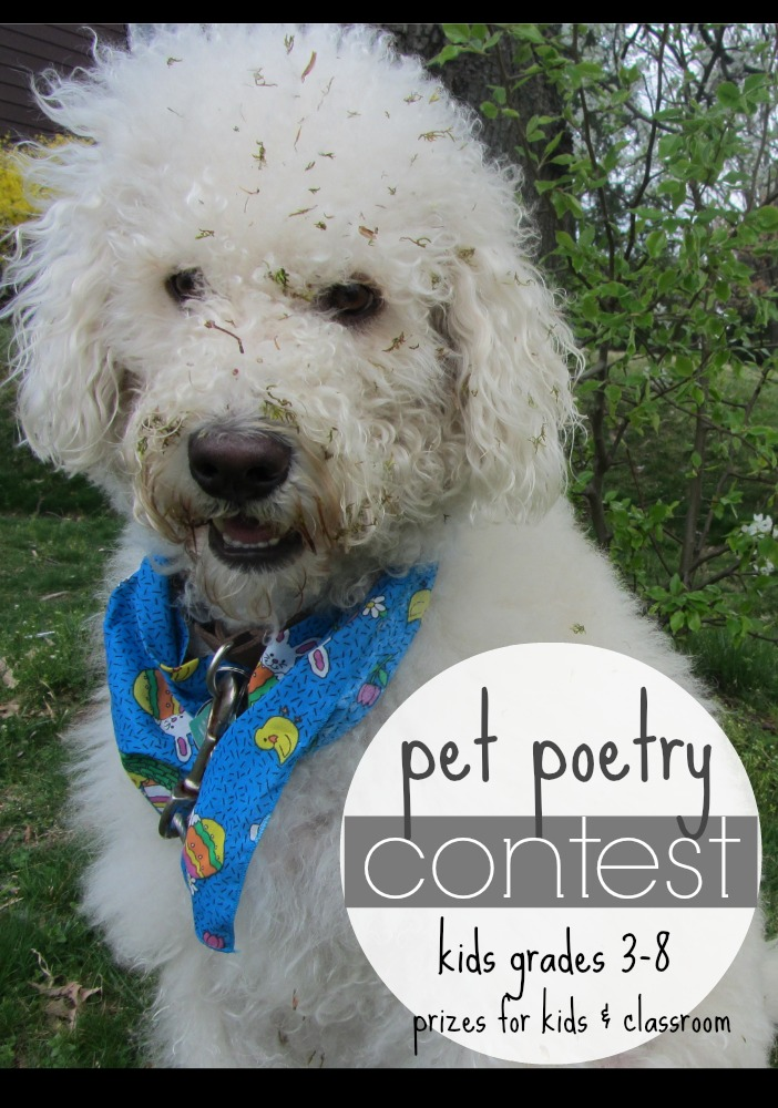 pet poetry contest | @PetsAddLife
