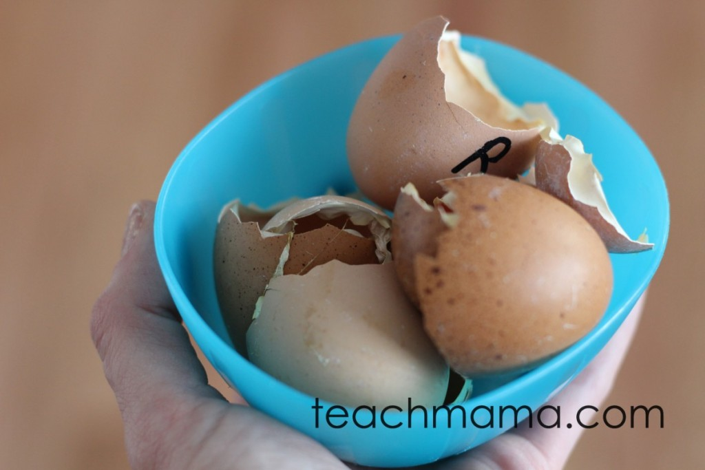 broken eggshells in blue bowl