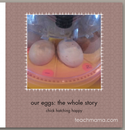 the best, coolest, most clever and creative    teachmama.com