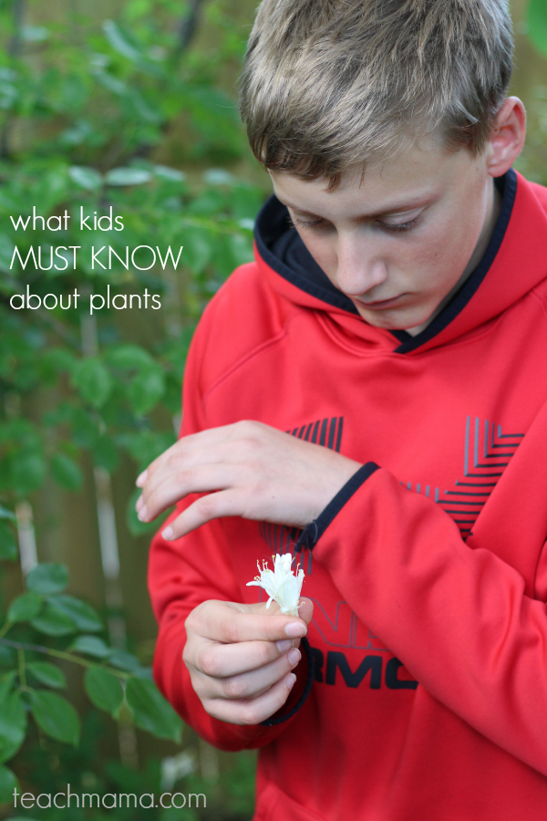 what your kids MUST know about plants: teachmama BLOOM!