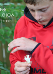what your kids MUST know about plants (hint: they're a big deal)