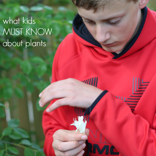 what your kids MUST know about plants (hint: they're a big deal) - teach mama